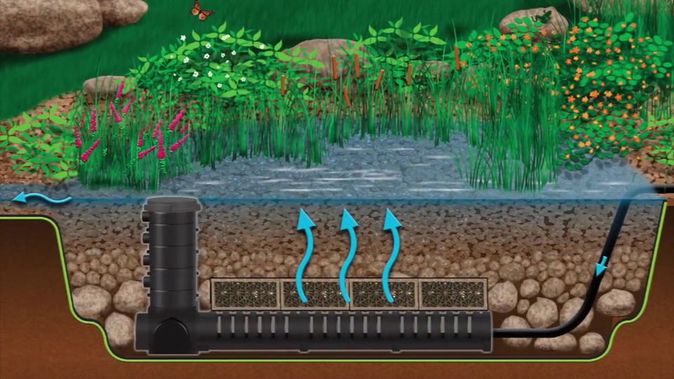 wetland filtration diagram