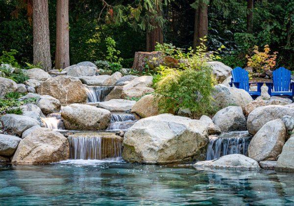 Debunking Pond Myths
